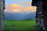 Switzerland, Berner Oberland, mountain-meadow, wood-alms, Eiger, monk, virgin, dusk, west-Alps, Berner Alps, mountains, meadow, mountain-panorama, sum...