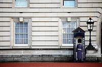 Guard at Buckingham Palace, London. England, UK