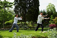 Senior Asian couple practicing tai chi