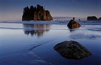 Second Beach near sunset, Olympic National Park. Washington, USA
