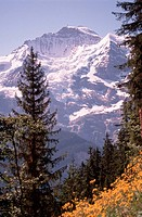 Alpine, Peak, Switzerland, Jungfrau