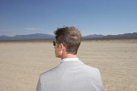 Businessman in dry lake bed, rear view