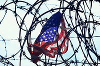 UNITED STATES FLAG. CAUGHT IN BARBED WIRE