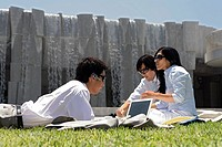 Three professionals are working while sitting in a lawn