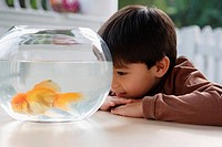 Young boy looking at goldfish bowl