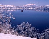 Lake Mashu Nakajima Teshikaga Hokkaido Japan Blue sky Tree Plant Island Water surface Lake Mountain
