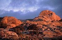 Joshua Tree National Park, Monazite rocks in sunrise light, California, USA