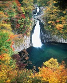 Yellow Leaves, Water splash, Water Stream, Autumn, Waterfall of Hottai, Chokai, Akita, Japan