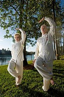 Mature couple practicing martial arts in a park