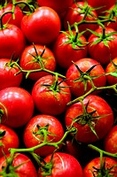 Close up view of fresh red tomatoes