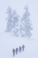 Skiers touring along Paul Ridge towards Elfin Lakes, Garibaldi Provincial Park, British Columbia, Canada.