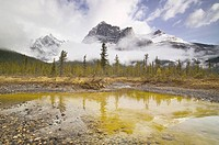 Michael Peak from the Emerald Lake Loop Trail, Yoho National Park, British Columbia, Canada