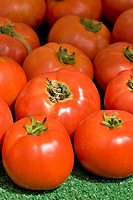 Organic tomatoes for sale at Santa Monica´s farmers´ market in California.