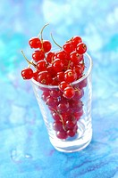 redcurrants in glass
