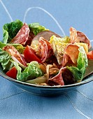 Cooked meats salad (thumbnail)
