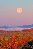 A nearly full moon sets as the sun rises over Wolfeboro, NH in this autumn photo.