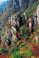 Mt. Daedunsan Provincial Park,Chungnam,Korea