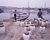 Shaoxing Alcoholic, Loading, Shaoxing, Zhejiang, China
