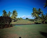 Denarau Golf course Resort Bulaf island Fiji Sky Clouds Tree People Coconut Coconut