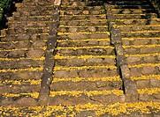 Mayple Stairs,Korea