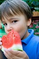 Boy age 4 biting into a delicious slice of watermelon  St Paul Minnesota USA