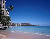 Waikiki Beach Diamond Head Oahu Hawaii Sky Mountain Sea Horizon Wave Beach Sandy beach Tree People Resort