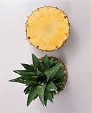 Pineapple (thumbnail)