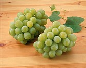 Grape, Muscat