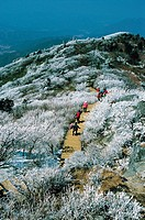 Mt. Deogyusan National Park,Jeonbuk,Korea