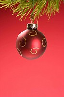 Still life of red Christmas ornament hanging from pine branch.