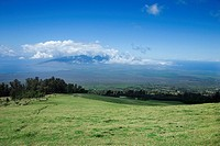 Landscape of Poli_Poli, Upcountry Maui, Hawaii, USA