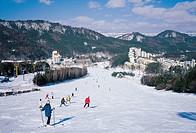 Yongpyeong Skiing Ground,Yongpyeong,Pyeongchang,Gangwon,Korea