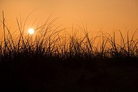 Sunset over beach sand dune on Bald Head Island, North Carolina