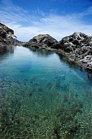 Tidal pool with seaweed and large rocks and blue sky in background in Maui, Hawaii