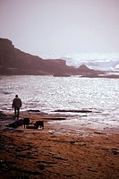 Shoreline vistas with waves and mist , man with dog Porthcotham Beach Devon near Newquay England UK