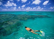 Tourist snorkeling in a transparent water with caribbean colors