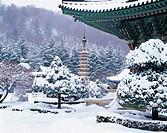 Octagonal 9-Story Stone Pagoda,Woljeongsa Temple,Odaesan National Park,Pyongchang-gun,Gangwon,Korea