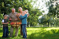 Family of four in orchard, man with basket of apples, low angle view