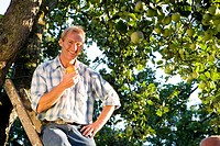 Man on ladder with apple in orchard, smiling, portrait, low angle view