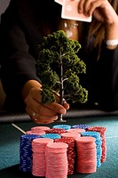 Woman placing model tree on pile of gambling chips on table, mid section
