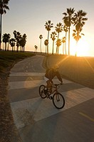 Cyclist on the bike path at Venice Beach in Venice, California.