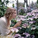 Woman smelling flowers Hydrangea serrata in garden, profile
