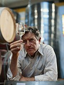 Mature man standing in winery holding glass of wine, examining