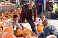 A grandfather and his grandchildren choosing pumpkins