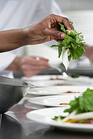 Chef preparing salad in kitchen close_up