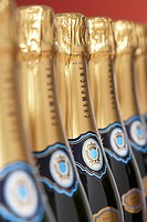 Row of champagne bottles close_up selective focus