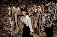Black thai girls carrying firewood, tuan giao region, Vietnam