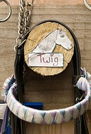 Picture of a horse on a hook