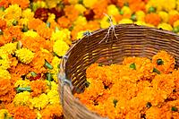 Flower Market, Calcutta, West Bengal, India