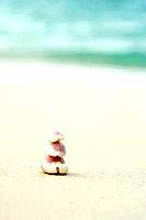 Seashells stacked at the beach, close-up